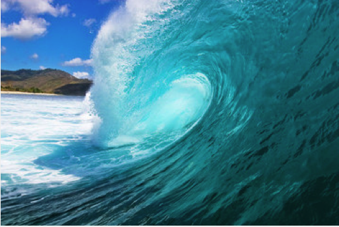 Is the Blue Wave Fact or Fiction